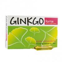 Gingko Forte 20 Ampolas