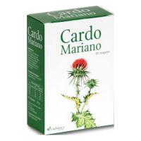 Cardo Mariano 60 drag