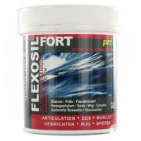 Flexosil Forte Gel 200ml